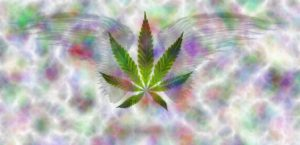 Rainbow version - cropped leaf and wings Marijuana Games logo