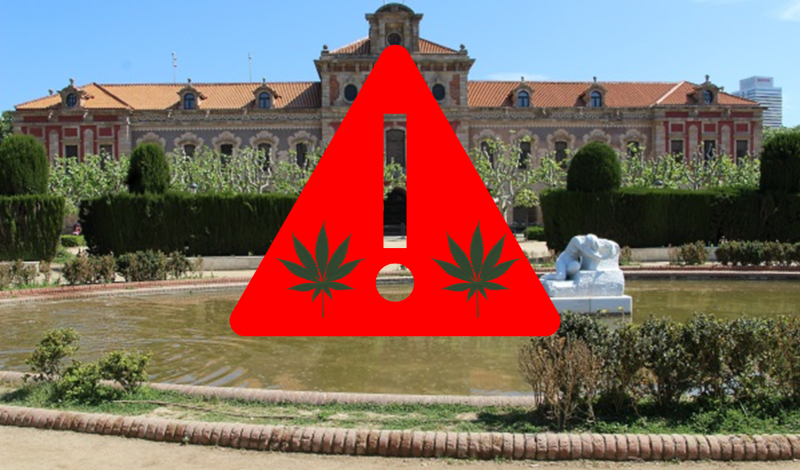 Featrure image for Is Marijuana Legal in Spain?
