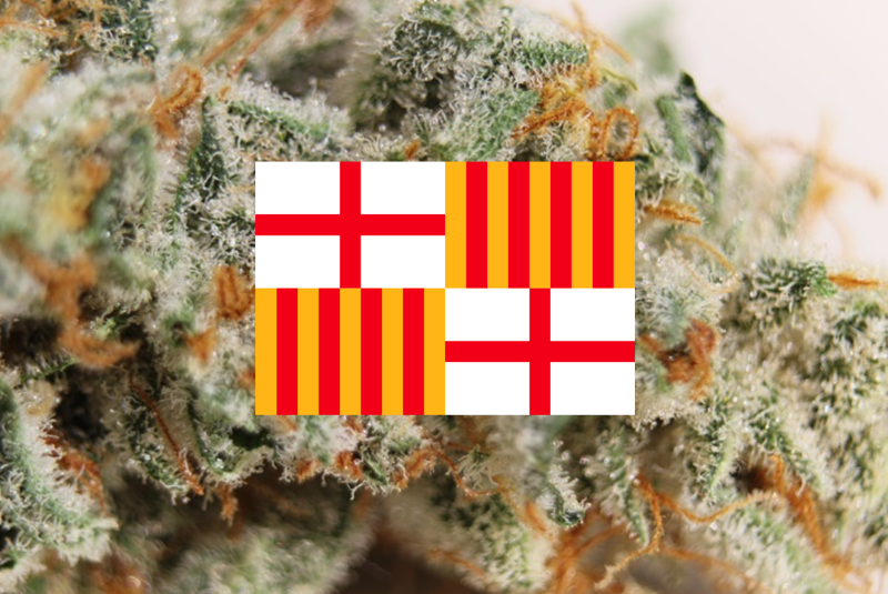 Feature image for Top 10 Barcelona Weed Strains